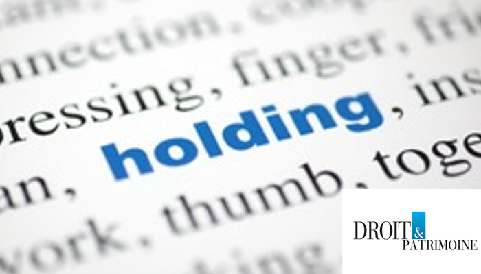 Holding animatrice : le conseil d'état donne des éléments d'appréciation (droit & patrimoine)